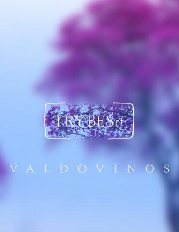 VALDOVINOS ASTERISMS EP